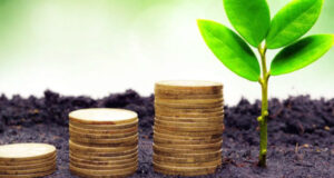 Make More Money as an Eco-Friendly Business